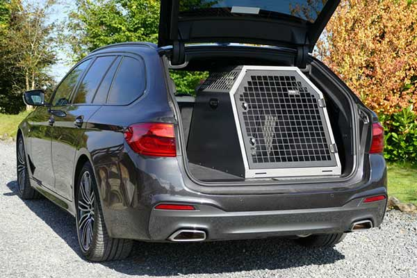 dog crate in the back of a car