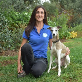 Maria and Lulu Pet Sitting Algarve